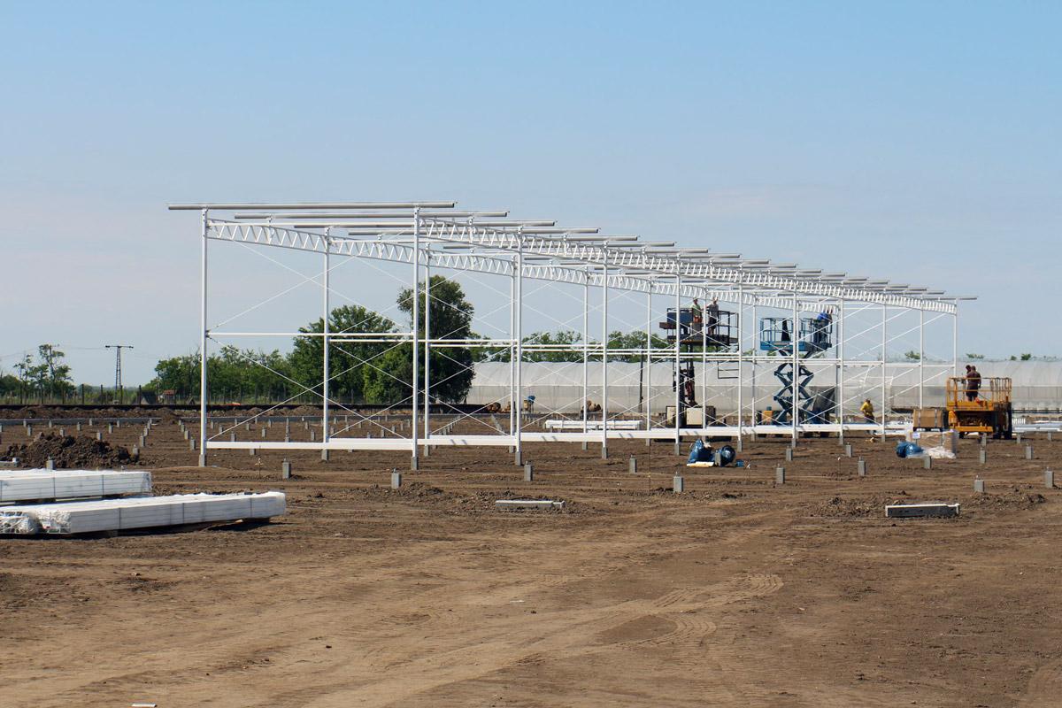 Épül az új üvegház a szegvári kertészetben