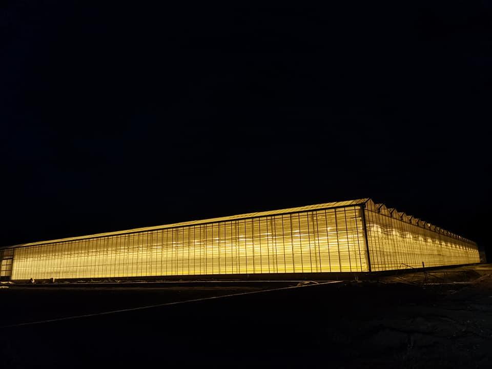 Új üvegház épült a szegvári kertészetben