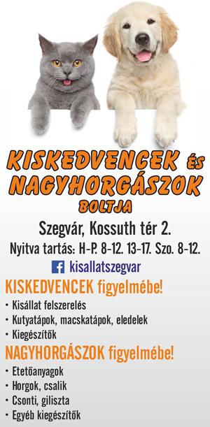 - Szegvár Online hirdetés -