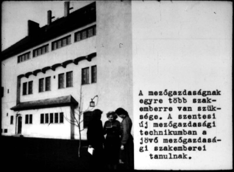 dia53-1954