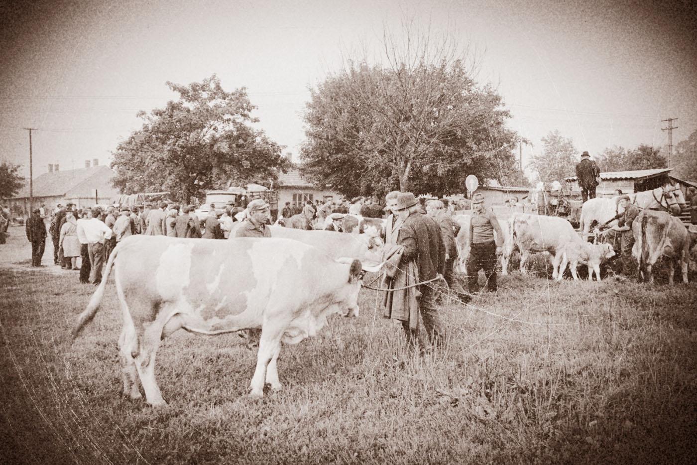 Így sikerült a szegvári falunap 73 évvel ezelőtt